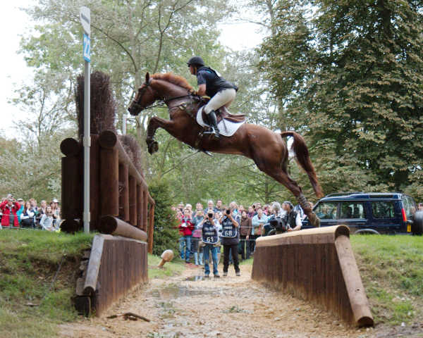 Hickstead Derby Offer