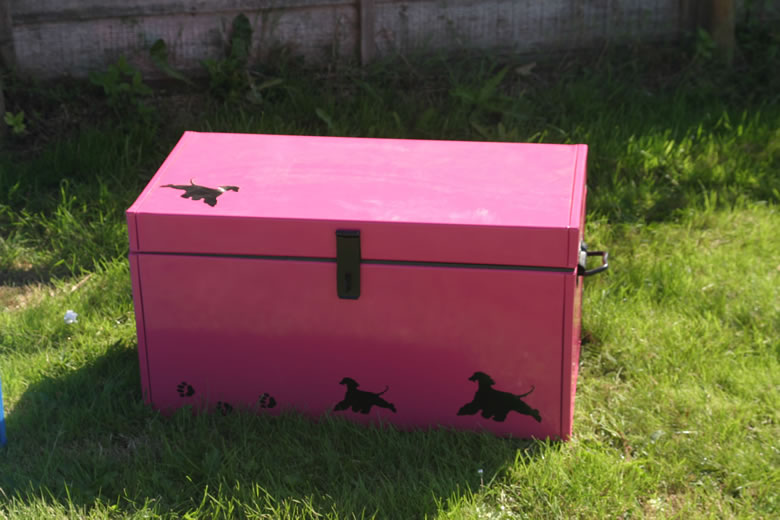 Deluxe Coloured Large Storage Trunk