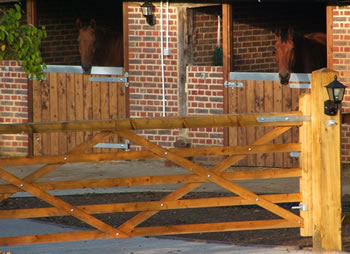 Stables behind gate